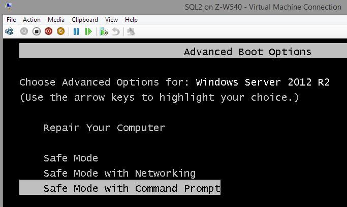 VMCrash-SafeMode